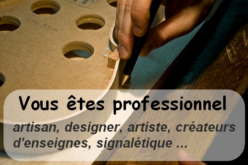 photo-accueil-professional-fr